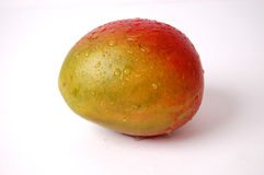 Wet Juicy Mango Royalty Free Stock Photography