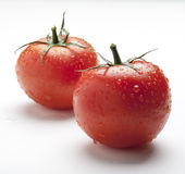 Wet Juicy Tomatoes Royalty Free Stock Images