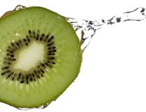 Wet Kiwi Stock Image