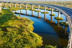 The wet land bridge piers Royalty Free Stock Photo