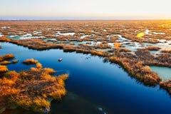 The wet land sunset Royalty Free Stock Photo