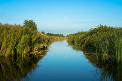 Wet Lands. A small water between Amsterdam and Haarlem in a place called Haarlemmerliede. Peacefull and rather quiet, given the location royalty free stock photo
