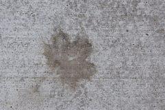 Wet Leaf Stain on Concrete. Grunge pattern wet leaf stain on concrete texture Stock Images