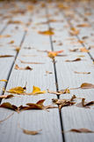 Wet leaves on decking Royalty Free Stock Image