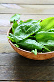 Wet leaves of fresh spinach in a bowl Stock Photography