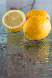 Wet lemons Stock Photography