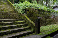 Wet lichen-covered stone steps Royalty Free Stock Photo