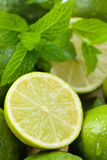 Wet limes and mint. Royalty Free Stock Images