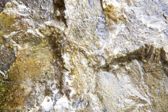 Wet Limestone Texture Royalty Free Stock Photo