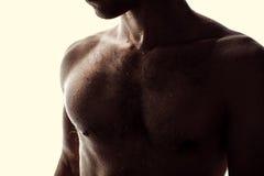Wet man's body Stock Image