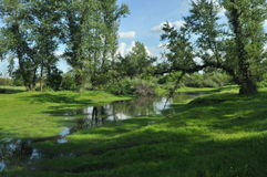 Wet meadow and riparian forest oxbow lake. Vistula Valley. Spring, Royalty Free Stock Photo