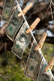 Wet money drying Stock Images
