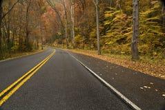 Wet Mountain Road Royalty Free Stock Photo