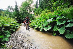 Wet mtb Stock Image