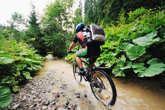 Wet mtb Stock Photo