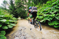 Wet mtb Royalty Free Stock Images