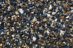 Wet Multicolored Pebbles on Seashore Royalty Free Stock Photography