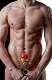 Wet muscle man body with a rose Royalty Free Stock Image