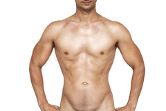 Wet muscular man torso Royalty Free Stock Photos