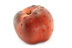 Wet nectarine Royalty Free Stock Images
