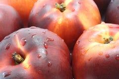Wet nectarines Royalty Free Stock Image