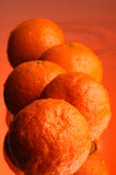 Wet orange #2. Orange, water and mirror surface Stock Image