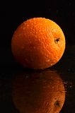 Wet orange on a black background. Fresh and wet orange on a black background Stock Image