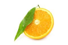 Wet orange segment Royalty Free Stock Photography