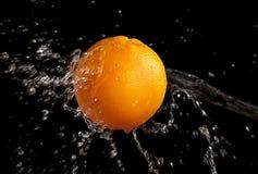 Wet Orange Royalty Free Stock Photography
