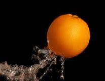 Wet Orange Stock Image