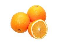 Wet Oranges royalty free stock photo