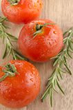 Wet organic tomato with rosemary Royalty Free Stock Images
