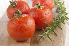 Wet organic tomato with rosemary Royalty Free Stock Photos