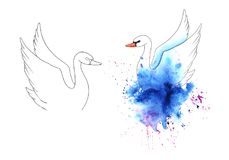 Wet painted watercolor swan on a colorful blots set stock illustration