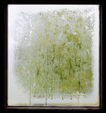 Wet pane. Close up on wet, steamy window pane with wooden frame stock image