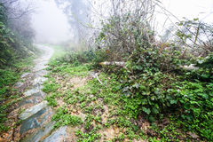 Wet path in field in rainy misty spring day. Travel to China - wet path in field in rainy misty spring day in area of Dazhai Longsheng Rice Terraces (Dragon's Royalty Free Stock Photography