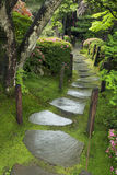Wet pathway Royalty Free Stock Images
