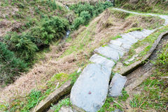 wet pathway and irrigation ditch on slope of hill Royalty Free Stock Images