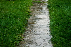 Wet pathway in the park Royalty Free Stock Photography