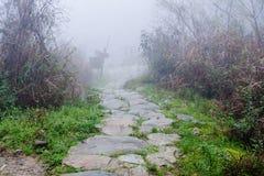 wet pathway in Tiantouzhai village in spring Stock Images