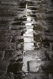 Wet paved street background. Refections on a wet paved city street Royalty Free Stock Images