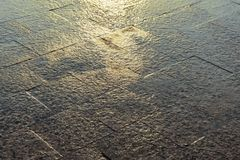 Wet pavement after rain at sunset. royalty free stock photo