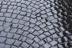 Wet pavement stone block Stock Image