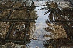 wet pavement stones Stock Image