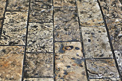 Wet pavement stones Royalty Free Stock Photography