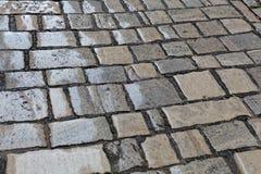 Wet paver blocks Royalty Free Stock Photography