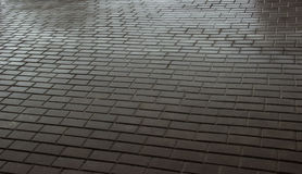 Wet paving stones. Paving slab wet texture Stock Image