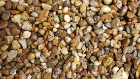 Wet pea shingle gravel pathway. Wet driveway in pea shingle stock images