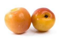 Wet Peach Stock Photography