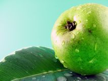 Wet pear on leaf Stock Photos